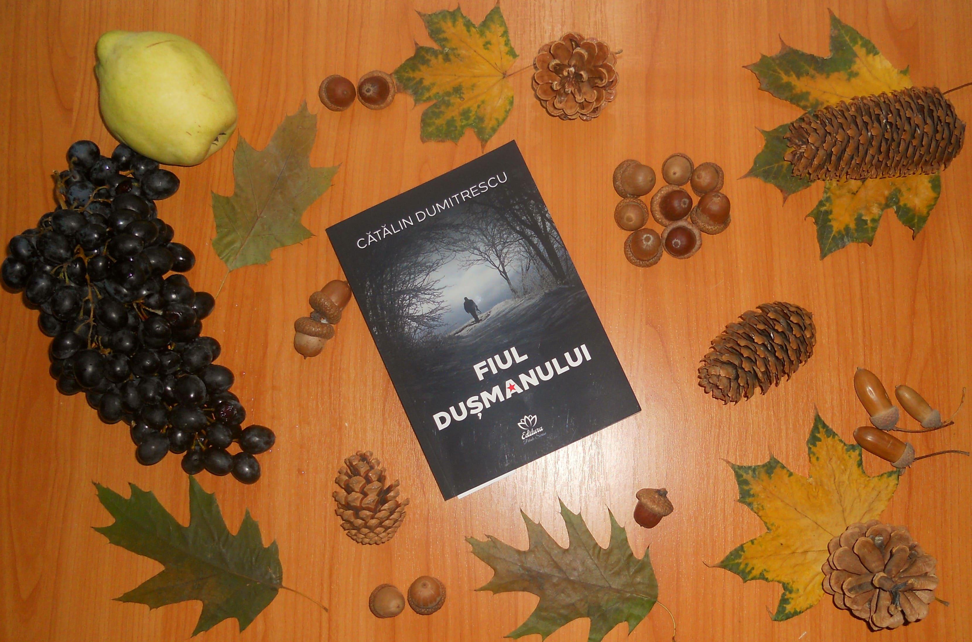 Fiul dușmanului – Cătălin Dumitrescu – recenzie Alina Geambașu